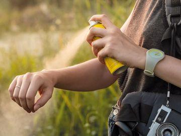 美國 被蚊咬 消委會 驅蚊產品 兒童