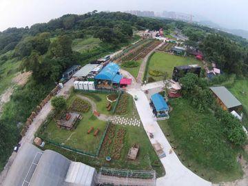 親子好去處2020-448農莊-親子農莊-香港財經時報HKBT