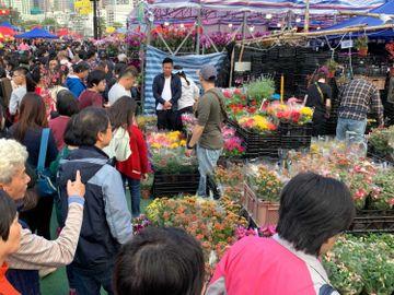 年宵取消-HKTVmall-本地花農-網上花市-佣金-商戶直送年花-香港財經時報HKBT