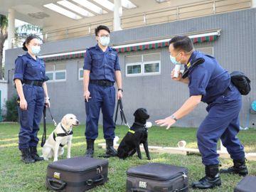 政府職位空缺-公務員-香港海關-海關督察-體能測驗-視力測驗