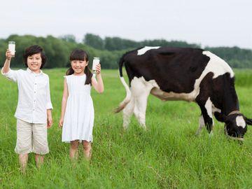 新股ipo-優然牧業入場費-一度指示禁內地人認購-專家-業績增長極穩定-是難得績優股-香港財經時報HKBT